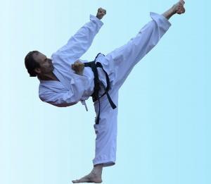 Das moderne Taekwon-Do System (DMTS